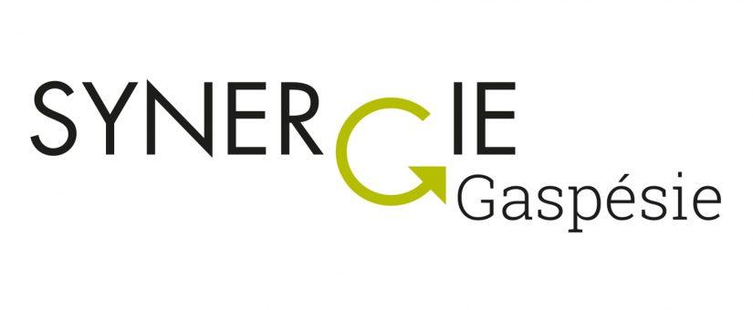 Synergie Gaspésie, nouveau projet d'envergure pour la région!